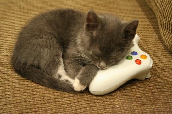 htlag kittyheader