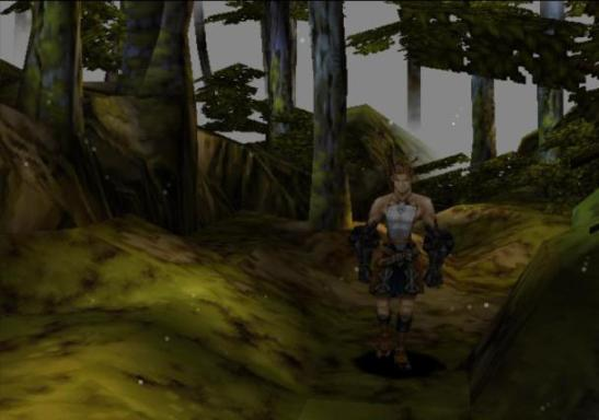 vagrant story ashley walks forest